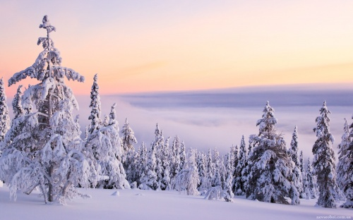 Beautiful winter landscapes (100 wallpapers)